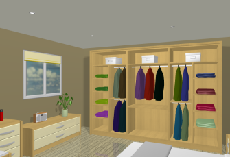 VR Bedroom Robe Interiors